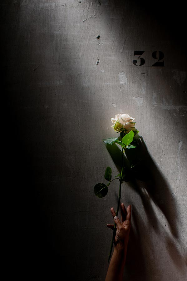 Love Is Like A Rose - Sandrine Rocher Derichebourg - créatrice artistique paris - Photo James Pouliot